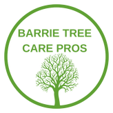 Barrie Tree Care